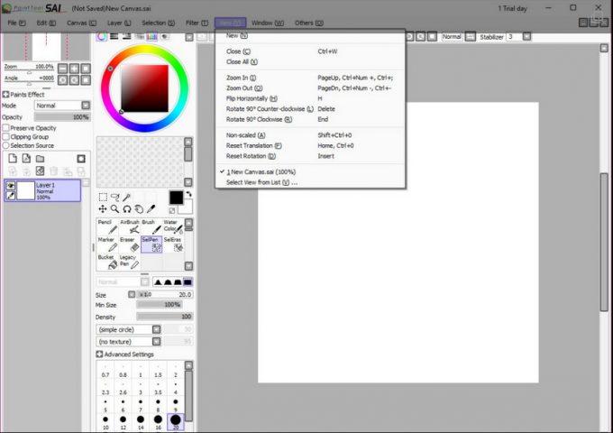 SAI PaintTool Editor