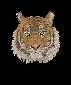 Tiger-PNG