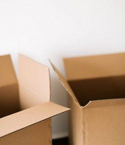 Kardus box single wall