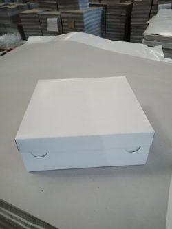 Box Tart TPS Polos